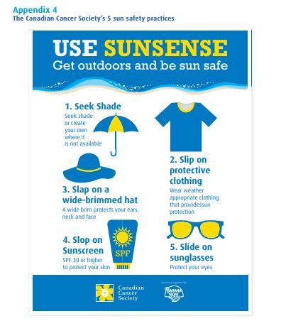 SunSense Newsletter